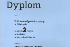 2021-2_miejsce_w_finale_slaskiej_ligi_orlikow-4