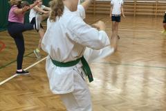 2021-karate_na_wf-11