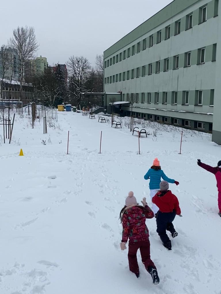 2021-sniezny_wf-1